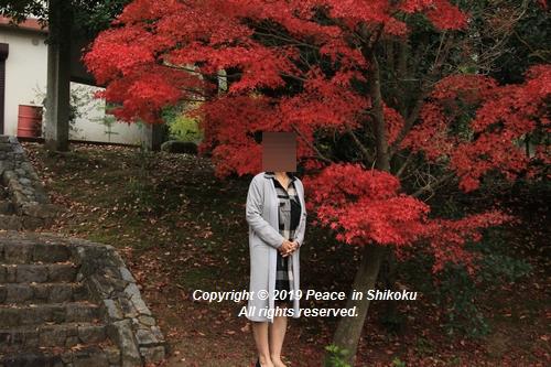 kagawakouyou-11127165.jpg