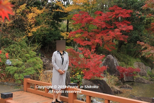 kagawakouyou-11127305.jpg