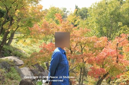 omusokmannou-10225773.jpg