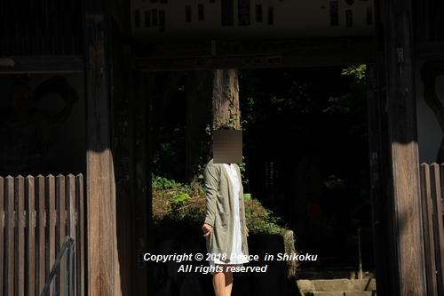 usomusoka-10155656.jpg