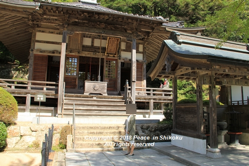 usomusoka-10155663.jpg