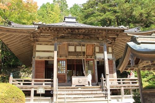 usomusoka-10155665.jpg