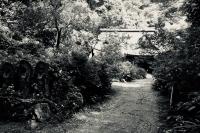 箱根阿弥陀寺