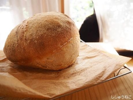 パンとJk2