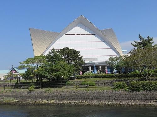 IMG_9064 鹿児島水族館