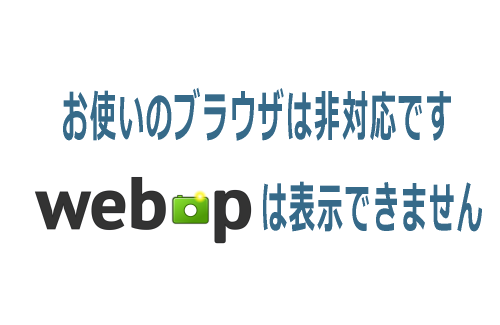google_webp_020.png