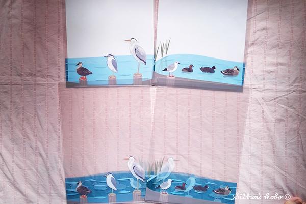 水鳥クリアファイルKIMG0581