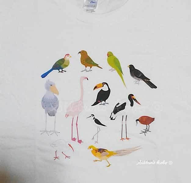 鳥の会2019TシャツKIMG1939