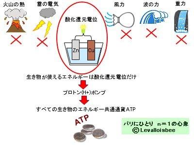 使えるエネルギーは酸化還元電位だけ