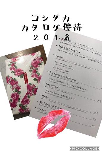 koshidaka_cata_2018.jpg