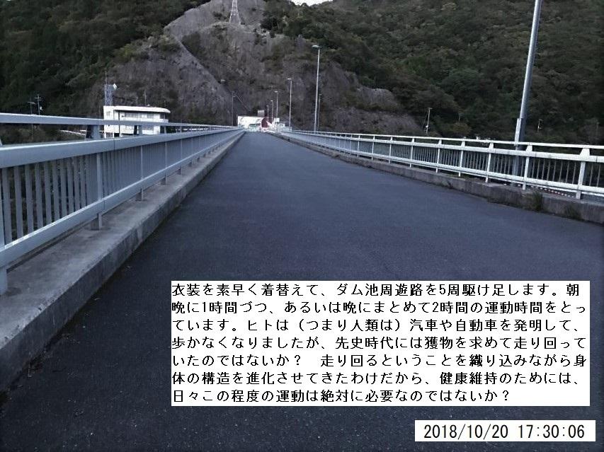 2018年10月20日の諭鶴羽山ダム駆け足