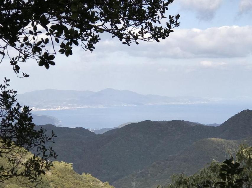 自生地から大阪湾が見える