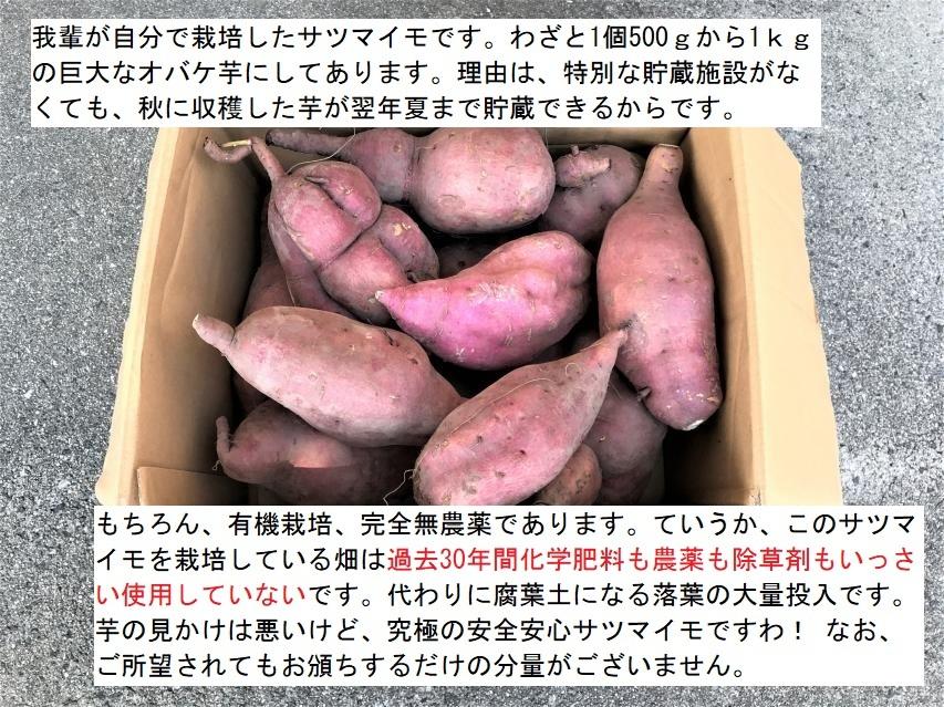 サツマイモを食べよう!