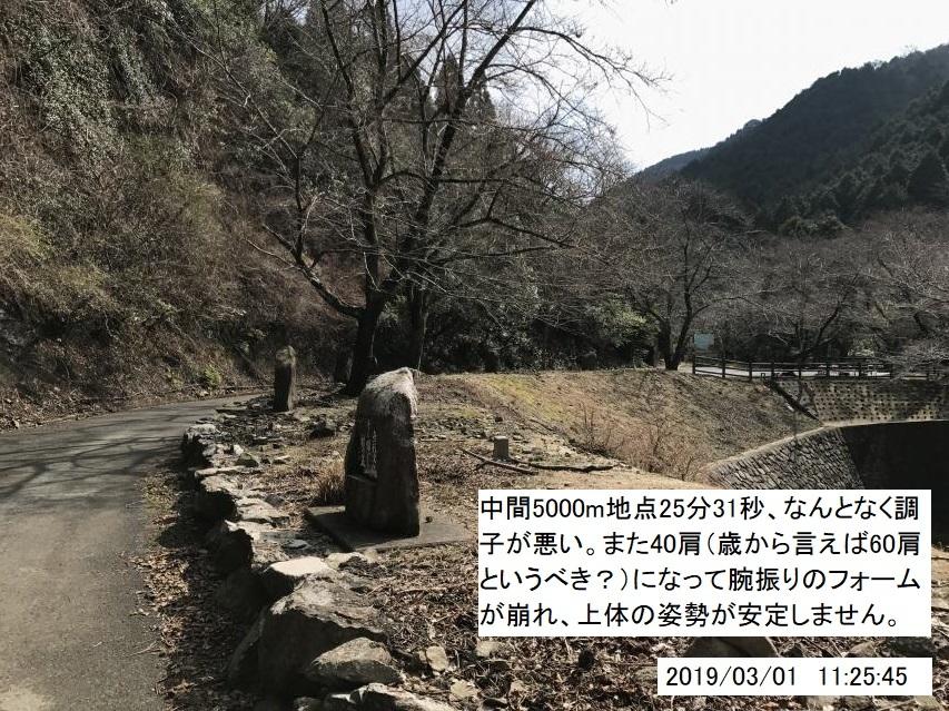 2019年3月1日の諭鶴羽ダム周遊路駆け足