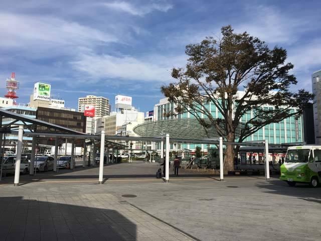 IMG_3940~photo