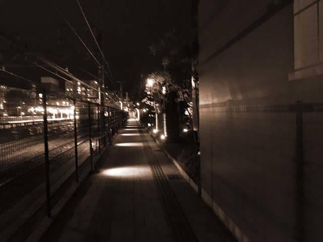IMG_3982~photo
