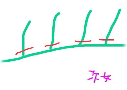 dh2406.jpg