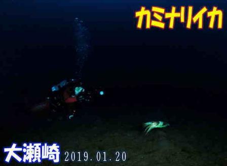 20190120_oosezaki_buroguyou01.jpg