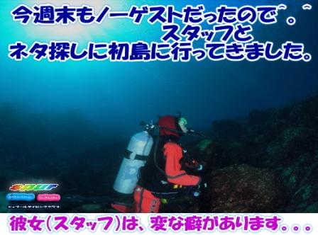 ログ20190127初島ブログ用