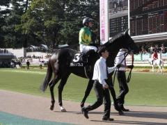 20121020 東京9R いちょうステークス サトノノブレス 02