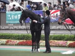 20121117 東京11R 東京スポーツ2歳S (G3) サトノノブレス 03