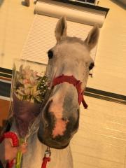 20190114 グローリーヴェイズの母メジロツボネに花束^^)