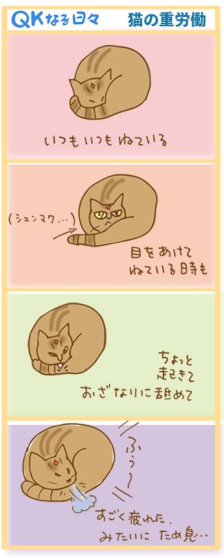qk manga11