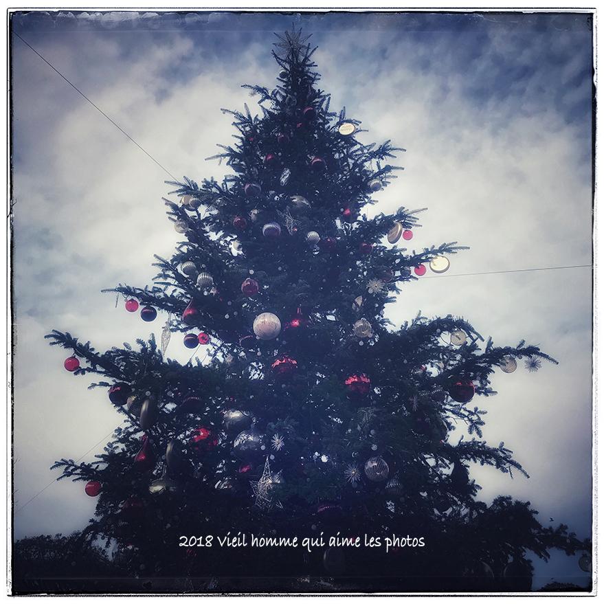 写真 2018-12-09 12 51 45