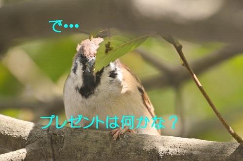 040_201810122106057a0.jpg