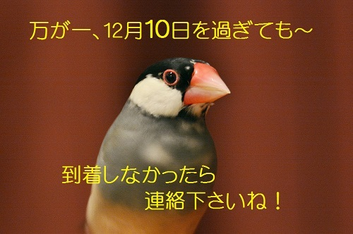 090_2018120501002321c.jpg