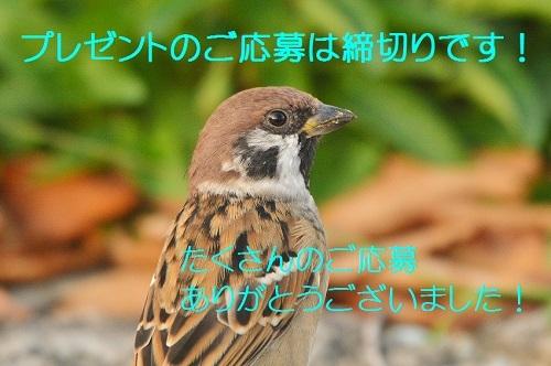 100_20181021213819d87.jpg
