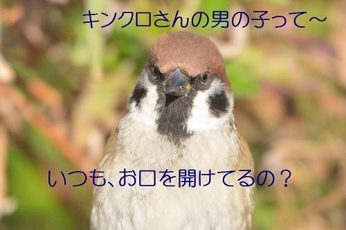 120_20190130211743cc7.jpg
