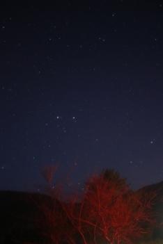 WR1A4936 (683x1024)