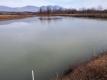ため池の初氷