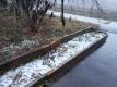 わずかに残る積雪の跡