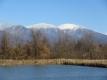雪が降った浅間山