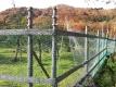 サルよけネットと電気柵