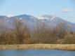 雪が少なくなった浅間山