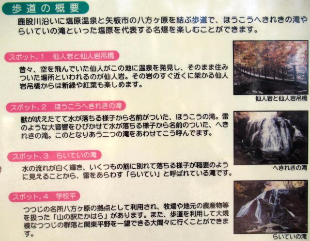 八方ヶ原自然歩道12
