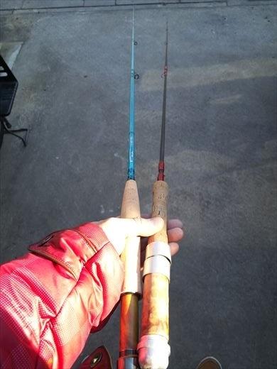 初釣りは朝霞ガーデン (1)