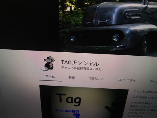 ブログと動画 (3)