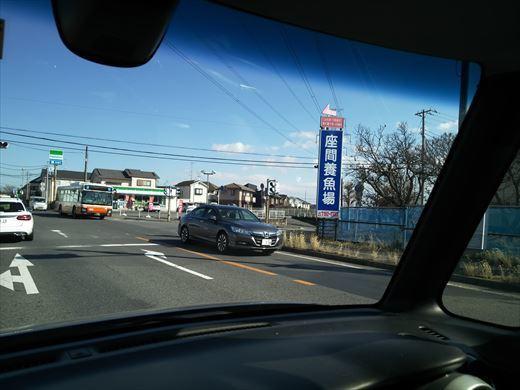 手賀沼フィッシングセンター2019 (16)