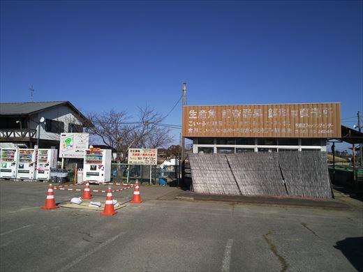 手賀沼フィッシングセンター2019 (17)