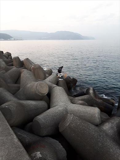 伊東で釣り (7)