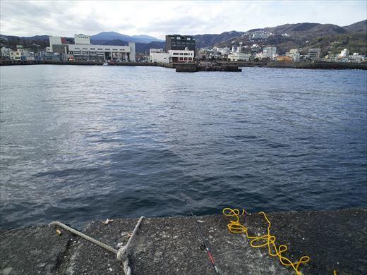 白灯台堤防で釣り (8)