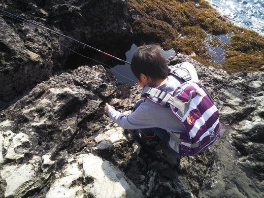 荒崎の海で釣ってみる (3)