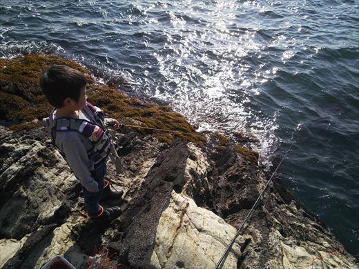 荒崎の海で釣ってみる (5)