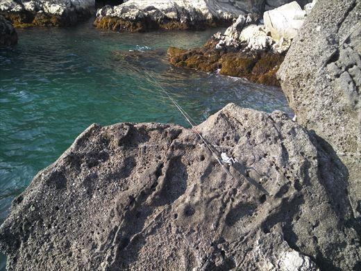 荒崎の海で釣ってみる (6)