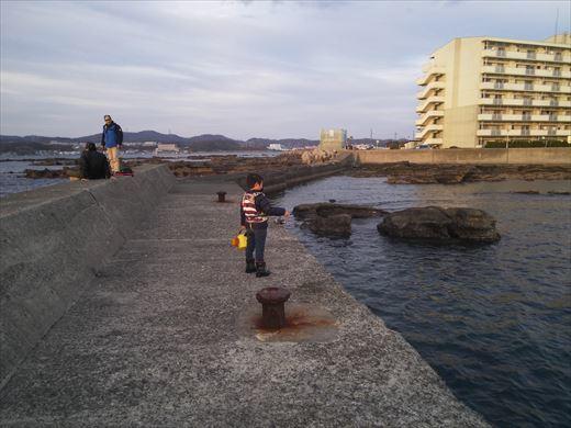 荒崎の海で釣ってみる (21)