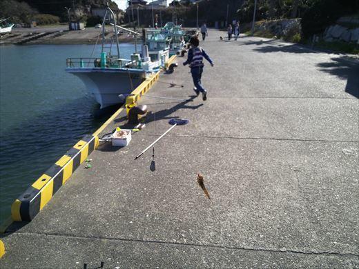 太東港釣り (16)